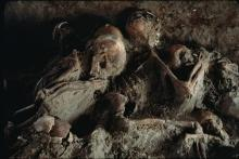 Fig.1 The dead of Herculaneum, burnt to death by 800-centigree hot pyroclastic flows from Vesuvius AD 79 (O Louis Mazzatenta, National Geographic)