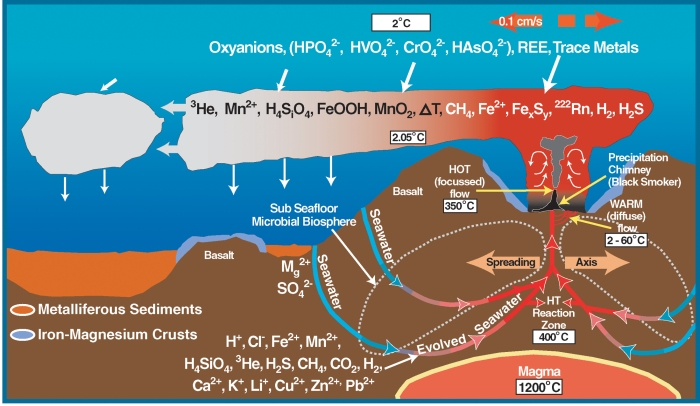 Distribution of chemicals around a hydrothermal vent.