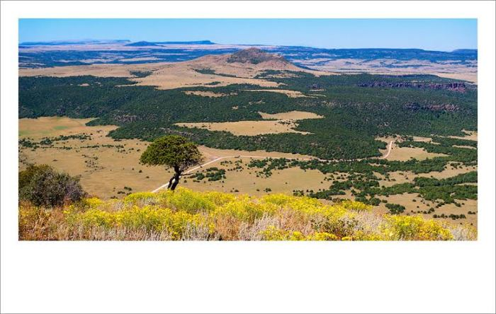 View of the Raton Clayton Volcanic Field from the top of the Capulin Volcano - http://jtphoto.wordpress.com/2010/09/13/raton-clayton-volcanic-field/