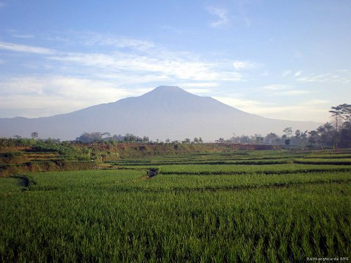 http://indahnesia.com/picture/VOL/014/mount_slamet_volcano.php