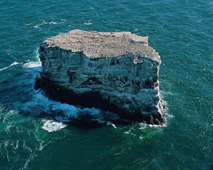 The Gannet riddled island of Eldey.