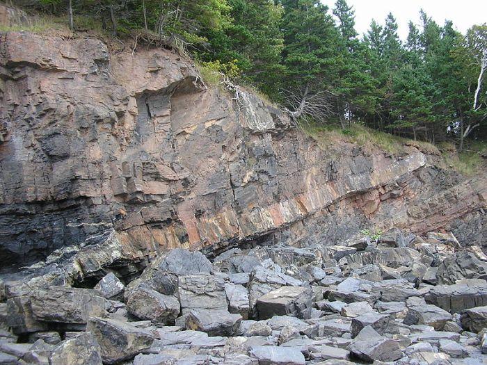 Image Wikimedia Commons http://en.wikipedia.org/wiki/File:Horton_Bluff_mid-Carboniferous_sill.JPG