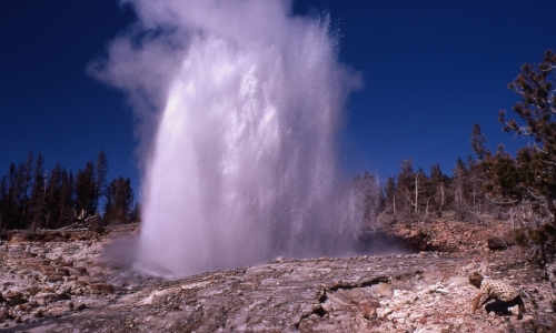 Steamboat_Geyser_Yellowstone_md