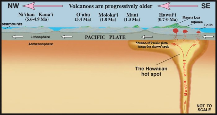 Schematic of the Hawaiian Hotspot
