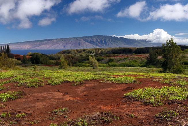 Lanai Central Volcano